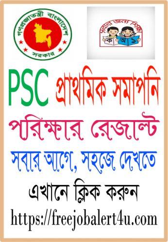 PSC Result 2017 | www.dpe.gov.bd